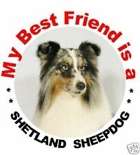 2 Shetland Sheepdog/Sheltie Car Stickers 1 by Starprint - Auto combined postage