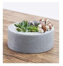 Hedgehog Family Walking Resin Flower Pot Succulent Plant (w/ tracking no.)