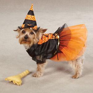 Spellhound Witch Dog Costume