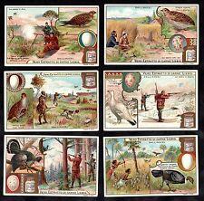 Game Birds & Eggs Card Set Liebig 1902 Hunting Partridge Quail Wild Turkey Vogel