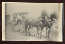 Early RPPC Family in Buggy with 2 Horse Team MN??A7029