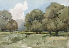 Paisaje pintura acuarela Hatfield Bosque Essex Antiguo 1924