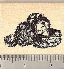 Resting Havanese dog Rubber Stamp H7520 Wood Mounted