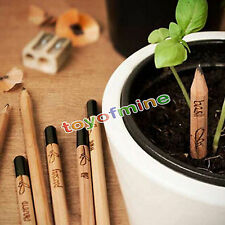 8 Pieces/Set Funny Pencil Plant - Herb Basil Tomato Green Pepper