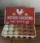 Rainbow 18 Pack Chicken hatching eggs~RaRe Dark F1-F6 NPIP Mixed Purebred Packs