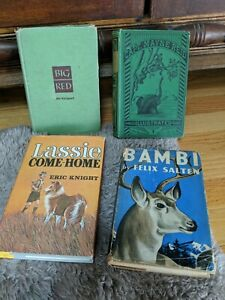 ANTIQUE CHILDREN'S BOOKS, LOT, HARDBACK BAMBI LASSIE BIG RED THE YOUNG VOYAGEURS