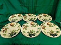 K2 - Pier 1 Macintosh Apple Dinner Plates Lot of 6