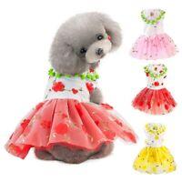 Pet Puppy Dog Cat Lace Skirt Princess Tutu Dress Skirt Summer Clothes Apparel