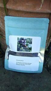 50 gram authentic kopi luwak gayo 100% Wild Civet ground  Coffee Roasted