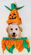 Pumpkin Dog Halloween Costume Parade 2 Piece Plush Outfit SZ M/L