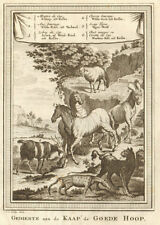 South Africa. Cape Sheep Zebra ass goat. Tiger Wolf. Musk cat Civet. SCHLEY 1748