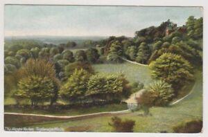 Kent postcard - The Happy Valley, Tunbridge Wells - P/U (A1341)