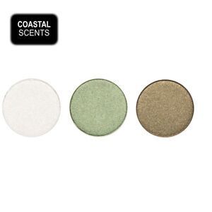 3 FOR THE PRICE OF 2 - Coastal Scents Hot Pot Eye Shadow - SET 11