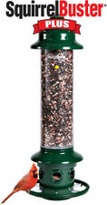 Squirrel Buster Plus Squirrel-proof Bird Feeder w/Cardinal Ring and 6 Feeding