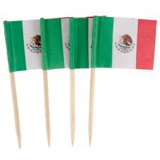 Bulk 100 Mexico Flag Food Picks -  Cocktail Picks Tooth Picks 6.5 CM