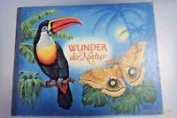 Wunder der Natur ~ein pädagogisches Bilderbuch 1957~ Kinderbuch