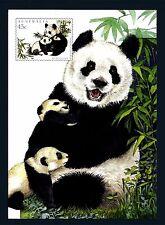 AUSTRALIA - 1995 - CARTOLINA - PA - 45c - Emissione congiunta con la Cina: panda