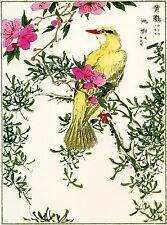 2 Japanese Woodblock Reproductions:Kashu: Nightingale & Kite - 2 Fine Art Prints