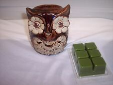 OWL  Hosley Candle Company Owl Fragrance Wax Warmer Set Includes Wax