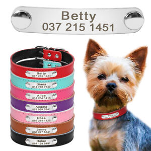Padded Leather Personalized Small Dog Collar with Custom Engraved Name ID Tag