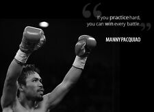 "Manny Pacman Pacquiao Boxing champion Fabric poster 17"" x13"" Decor 11"