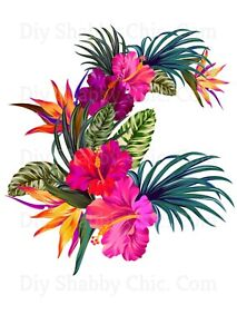Waterslide Decal Image Transfer Vintage Upcycle Shabby Chic Tropical Flowers DIY