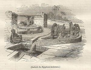 A5359 Sackieh Des Egyptiend Modernes - Xylograph Antique Of 1842 - Engraving