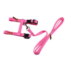 Cat Puppy Adjustable Harness Collar Nylon Leash Lead Safety Walking Rope