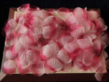 """Vtg Millinery Flower Collection 6 1/2"""" Filmy Petal Pink Fairy Wing 41pc H1912"""