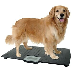 LARGE DIGITAL PET SCALE Veterinary Animal Weight Dog Cat Black Up to 225 lbs