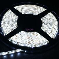 5M/Roll Cool White LED Strip Light Bass Speed Boat Marine Light tape Waterproof