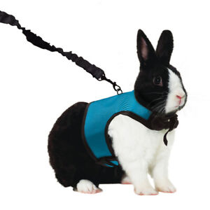 Kaytee Super Pet Comfort Harness W/Stretchy Stroller X large