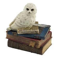 Snow Owl On Books Trinket Box - Animal Statue