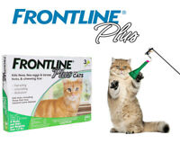 Frontline Plus Flea and Tick Treatment for Cats - 3 Dose