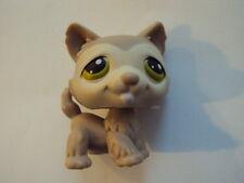 snoopette2008 - Chien Husky Dog Chiot puppy # 358 LITTLEST PET SHOP (Petshop)