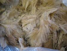A2357 FEATHERS loose marabou beige 2 oz (gallon zip)