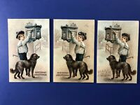 3 Birthday Antique Boy w Dog at Mailbox. 1900s. Collector Items. Nice w Value