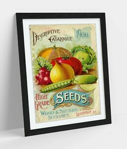 QUIRKY VINTAGE SEEDS ADVERTISEMENT ART POSTER -FRAMED WALL ART PICTURE PRINT