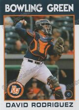 2016 Bowling Green Hot Rods David Rodriguez RC Rookie Rays