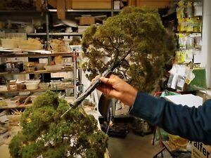 Diorama Zubehör, 1 Modellbaum Buche Sommer, 60 cm hoch