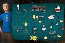 THE BIG BANG THEORY ~ FRIENDSHIP ALGORITHM GRAPH 24x36 TV POSTER NEW/ROLLED!