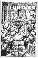 Teenage Mutant Ninja Turtles 4 RI Sketch Kevin Eastman Variant IDW 1st TMNT NM