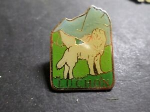 COLLECTION PIN'S OBJETS PUBLICITAIRES, LUCHON, CHIEN, DOG BADGET