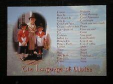 POSTCARD B45-3 CAERNARVONSHIRE THE LANGUAGE OF WALES