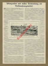 Vegetable Oil Factory Army Man & CO.. Hamburg Bill Werder agri-food industry 1912