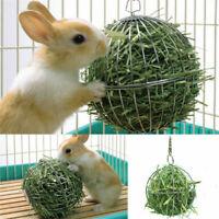 Sphere Feed Dispenser Hanging Ball Toy Guinea Pig Hamster Rat Rabbit Pets Supply
