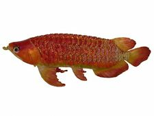 Bejeweled Big Arowana Fish Statue