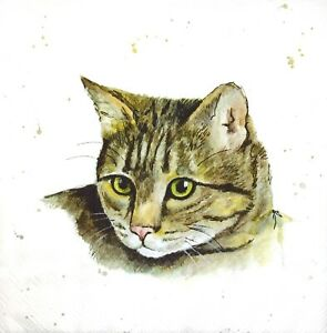 N399# 3 x Single Paper Napkins For Decoupage Craft Brown Grey Cat Head