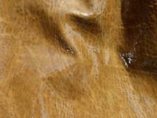 goatskin leather hide skin Antique Chestnut Brown Elephant Grain Patent finish
