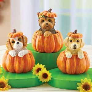 Set of 3 Adorable Puppy Dogs Sitting In Pumpkins Halloween Collectible Figurines